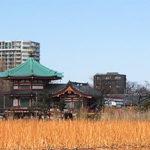 江戸最古の七福神!上野・不忍池辯天堂(弁天堂)