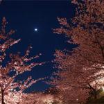月の天体観測!平成最後の満月「ピンクムーン」